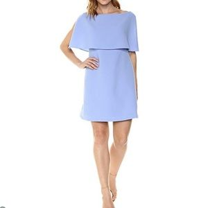 Adrianna Papell Split Sleeves Popover Dress